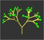 plant_opt